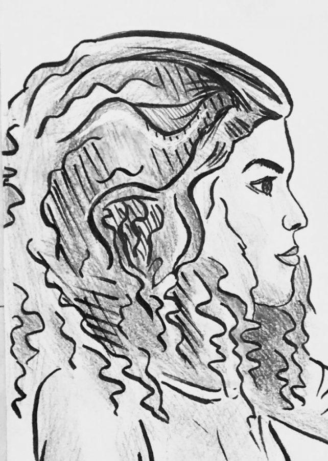 Drawn by staff member Alice Cai.