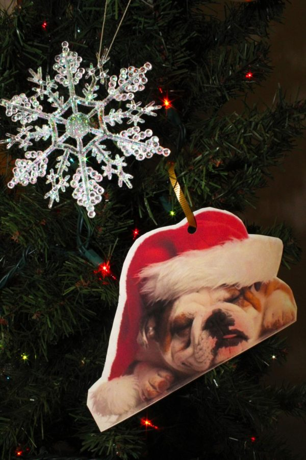 One ornament on the Bulldog Tree in Phase 3 first floor.