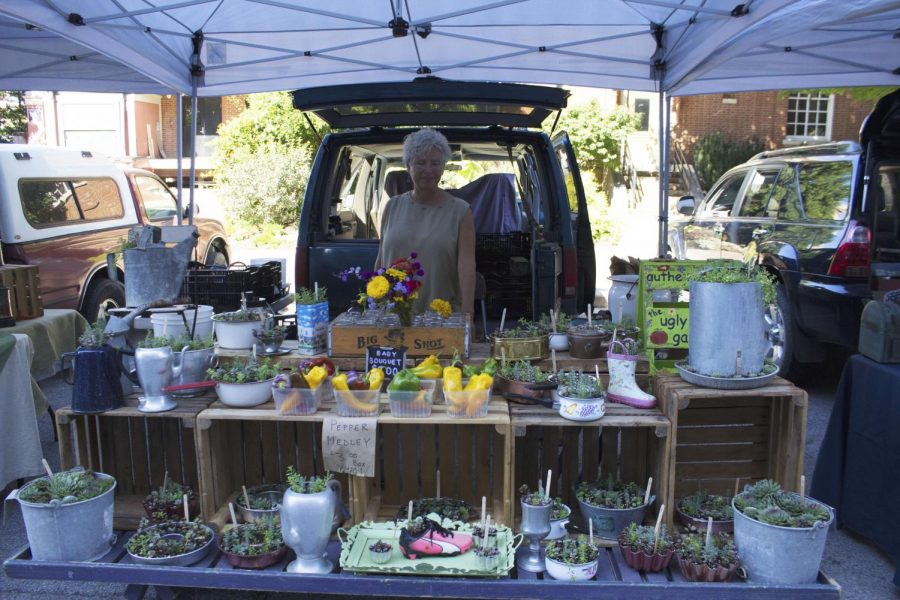 A local vendor who specializes in peppers that pop with color and succulents using her own take on pots.