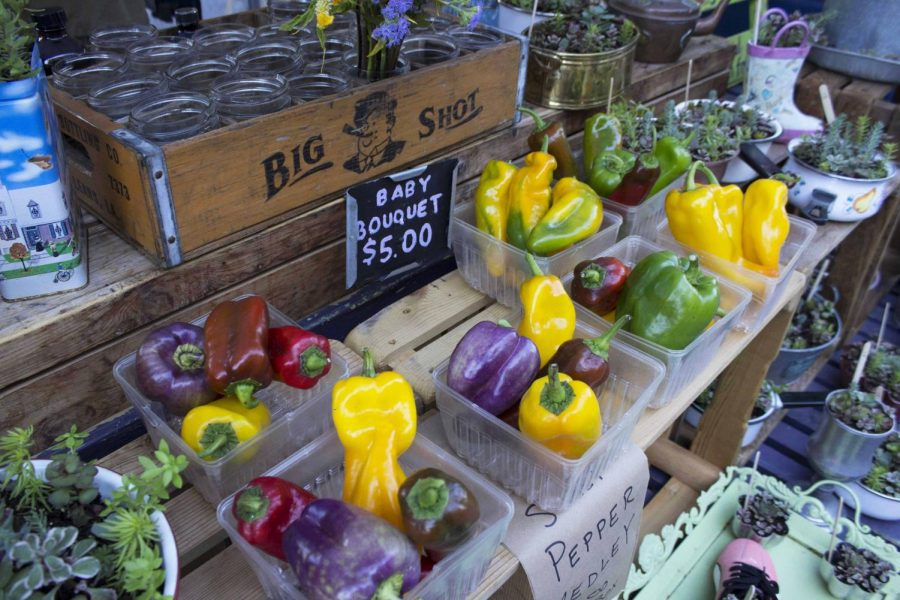 Brightly colored peppers are one of the the many things you can find at the farmers market. They are a popular piece in most vendors booths.