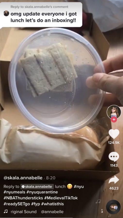 New York University student quarantine meals
