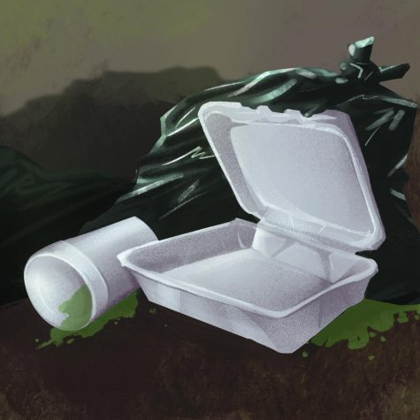 Overturning of Fayetteville Styrofoam ban only hurts environment